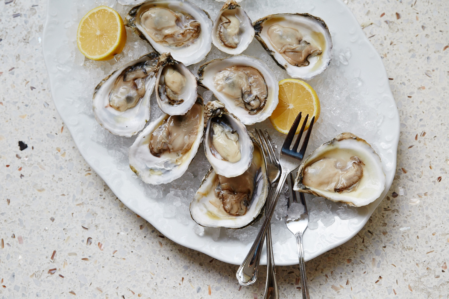 Marion_Oysters_007